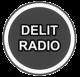 NB_logo-delit-radio2